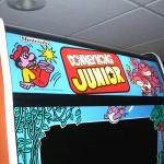 Donkey Kong Junior - Image 8
